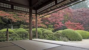 garden trees courtyard zen garden