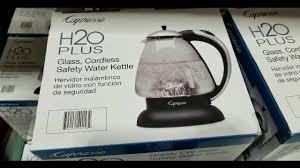 capresso gl electric tea kettle