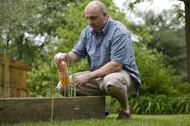 homemade pesticides for your flower garden