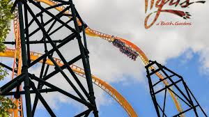 busch gardens tampa changes for