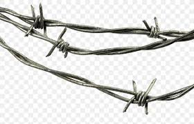Barbed Wire Steel Galvanization Fence Png 1600x1031px Barbed Wire Black And White Drawing Farm Fence Download