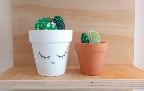 rock cactus garden savlabot