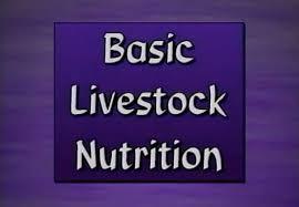 basic livestock nutrition