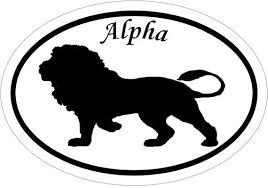 Lion Vinyl Decal Alpha Window Sticker Euro Oval Truck Decal Etsy
