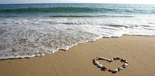 Image result for loving shores