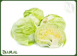 egyptian iceberg lettuce namal for