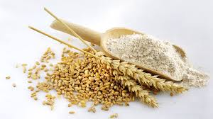 is whole wheat lower in calories than