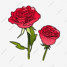 ردة حمراء رسم مرسومة باليد روز شامبانيا وردة أحمر Png وملف Psd