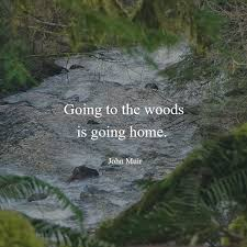 inspirational quotes that will make you want to go hiking