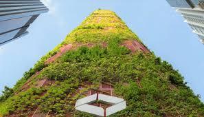 inside singapore s city in a garden