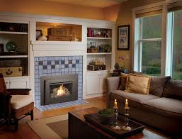 32 dvs gas fireplace insert eclectic