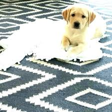 rugs mosaic kite review wool tile