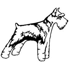 14 9 11 8cm Schnauzer Dog Car Stickers Personality Waterproof Vinyl Decal Car Styling Accessories Wish