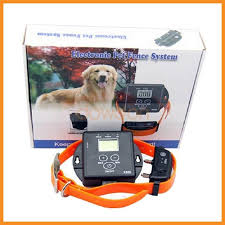 China 5000 Square Meters Wireless Invisible Electronic Pet Dog Fencing System For Dogs Pet Safety Electric Dog Fence Controller Photos Pictures Made In China Com