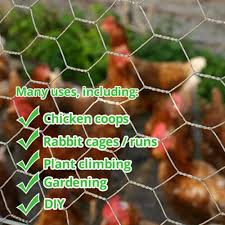 Poultry Fencing Chicken Fencing Uk Wire Fence