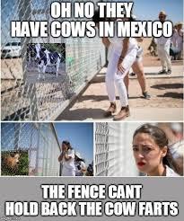 Politics Aoc Fence Memes Gifs Imgflip