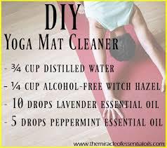 homemade essential oil fly spray for