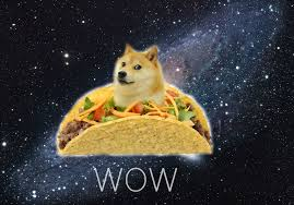 taco doge wallpaper 2048x1432 203100