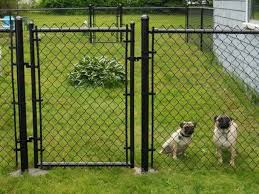 Dog Fence Cost Guide Installation Tips Earlyexperts
