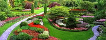 garden ideas in brisbane queensland