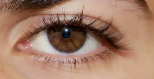 صور عيون عسليه اجمل الصور للعيون العسليه رمزيات