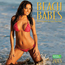 NEW - Beach Babes 2013 Swimsuit Calendar Hillary Fisher | eBay