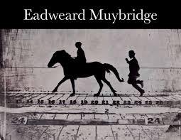 Eadweard Muybridge: Phillip Brookman: 9781854378378: Amazon.com: Books