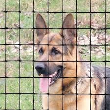 Tenax Pet Fence Select 4 X 100 Black 2a140073 Tenax Fence