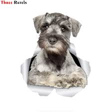 Threeratels Ftc 1079 3d Curious Schnauzer Dog Sticker Car Sticker Decal For Car Wall Toilet Kid S Room Luggage Skateboard Laptop Car Stickers Aliexpress