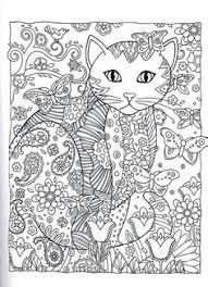 831 Beste Afbeeldingen Van Poezen In 2020 Katten Dieren En Kat