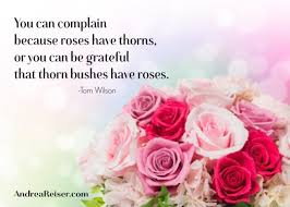 you can complain because roses have thorns or you can be grateful