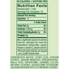 t canada dry ginger ale 12 fl oz