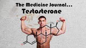 how testosterone affects hair growth