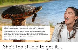 A Post Turtle Is Like When You Re Driving Down A Country Road And You Come Across A Fence Post With A Turtle Balanced On Top That S A Post Turtle You Know He