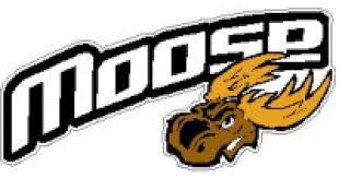 Custom Moose Racing Decals And Stickers Any Size Color