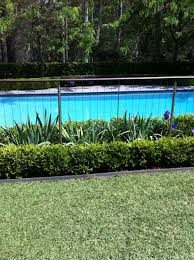 Really Like This Subtle Pool Fence With Landscaping On Both Sides Maybe For North And East Sides Of Pool Pool Fencing Landscaping Garden Pool Pool Fence