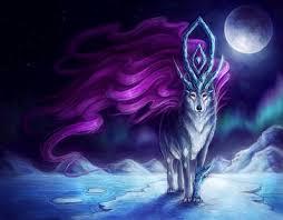 hd wallpaper snow wolf 3d wallpaper