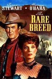 The Rare Breed (1966) - Watch on Peacock Premium, TCM, and Streaming Online