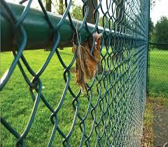 40 40mm pvc coated wire mesh garden