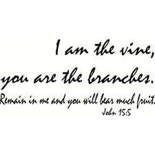 Amazon Com Creation Vinyls John 15 5 Wall Art I Am The Vine You Are The Branches Remain In Me And You Will Bear Much Fruit Home Kitchen
