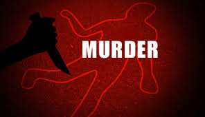Delhi: 65-year-old woman, daughter stabbed to death at their ...