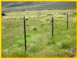 58 Reference Of Barbed Wire Fence Cost In 2020 Wire Fence Barbed Wire Fencing Building A Fence