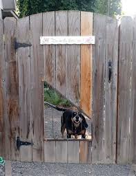 25 Best Cheap Backyard Fencing Ideas For Dogs 6 Backyard Fences Dog Backyard Cheap Backyard