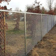 China Double Chain Link Fence With Bears In Background China Double Chain Link Fence Double Chain Link Fence With Bears