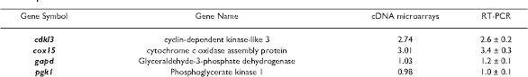 Enhancement of cell proliferation in various mammalian cell lines by gene  insertion of a cyclin-dependent kinase homolog | Semantic Scholar
