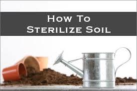 sterilize soil organic potting mix