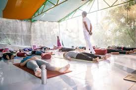 300 hour vinyasa flow advanced yoga