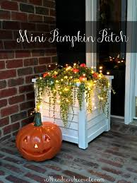 Mini Diy Pumpkin Patch Redhead Can Decorate