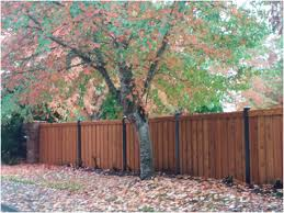 Residential Farm Ranch Structural Wood Fence Plr Distribution