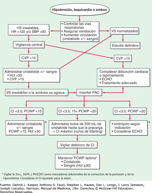 """Image result for algoritmo de tratamiento del shock hipovolémico 2019"""""""